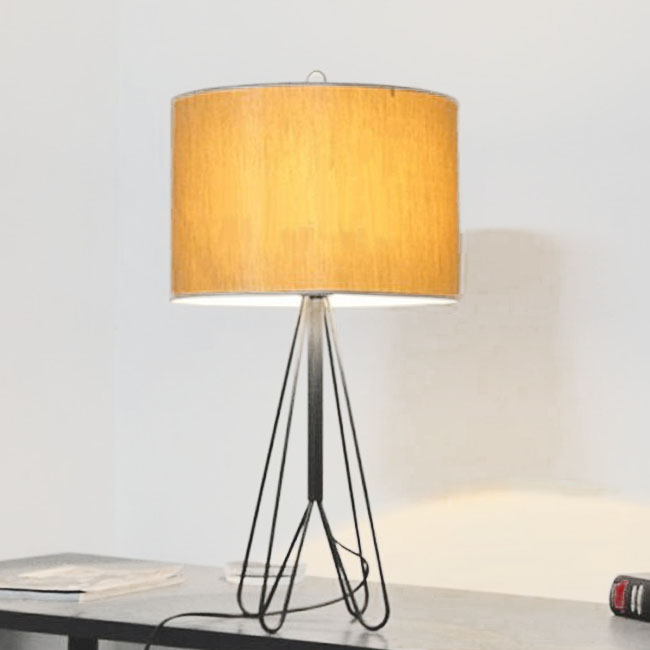 Modern Iron Line and Fabric Shade Table Lamp 10504