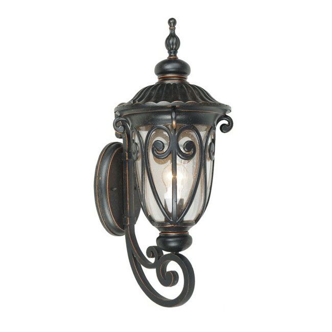 Outdoor Metal and Bubble Glass Wall Sconce 9549
