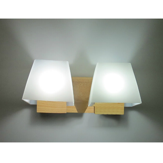 Modern Wood Canopy and Matte Glass Shade Wall Sconce 11590
